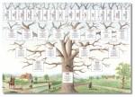 arbre généalogique.jpg