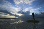 Rendez-vous nature en Estuaire de Seine, mercredi 6 août 2014