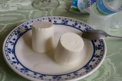 les pots à yaourt.JPG