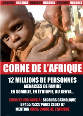 Affiche-Corne_afrique.jpg